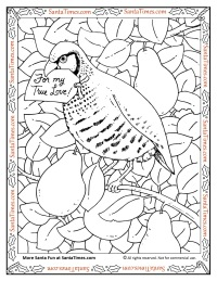 Happy Holidays Santa Coloring Page Partridge In A Pear Tree Summer Fun